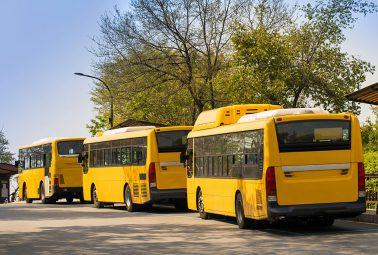 שלושה אוטובוסים צהובים ממתינים בקייב